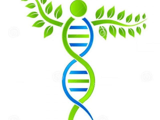 DNA PHARMASTORE